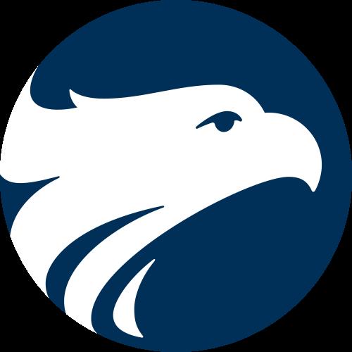 icone-aguia-wizard